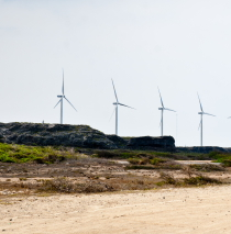 Aruba windmills