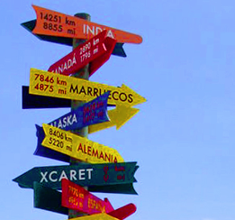 In which direction is your business going?