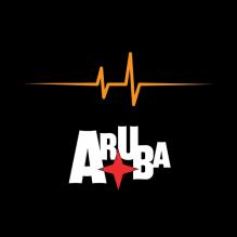 Electric Festival 2013 Aruba